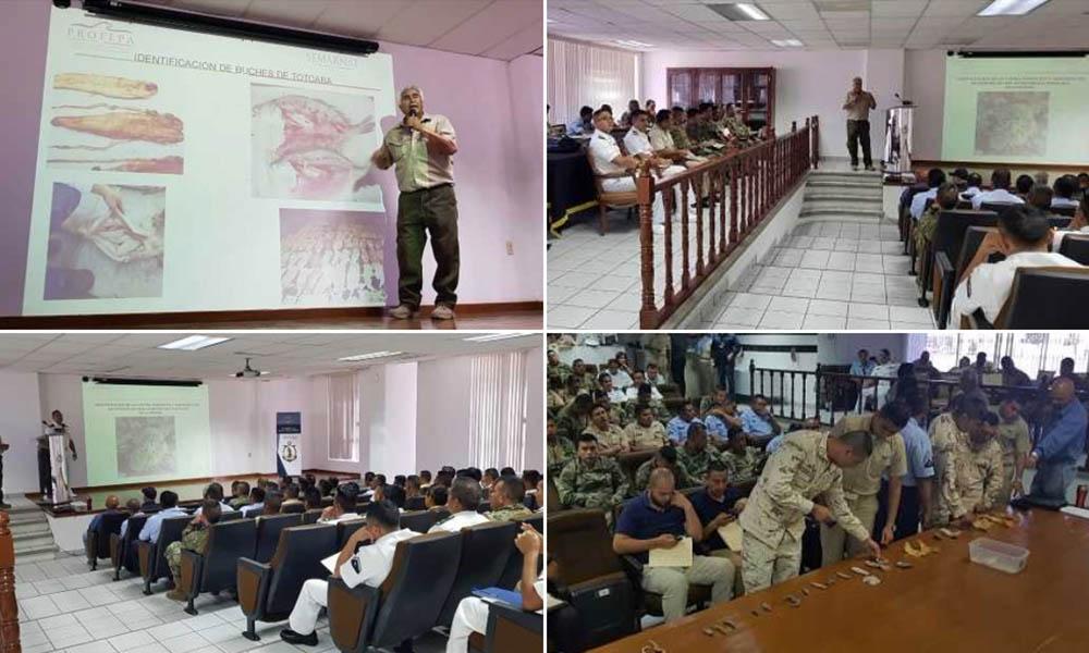 Capacitan a personal de seguridad en Baja California para evitar tráfico de animales