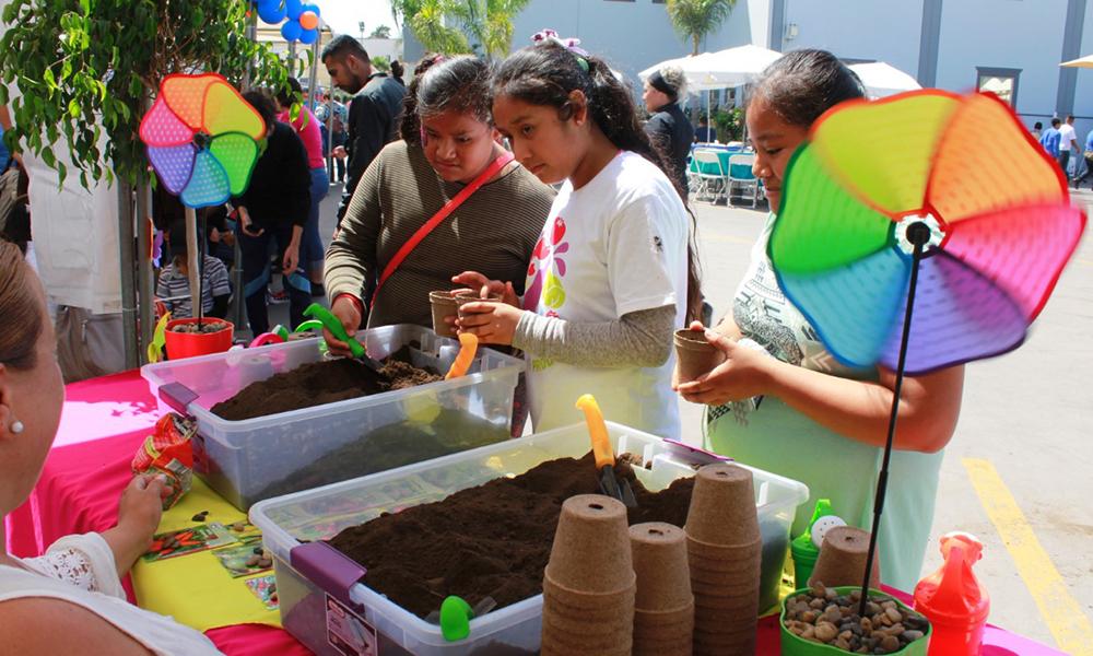 """Presentan por segunda ocasión el mercado de productores locales"""" Rosarito Produce"""""""