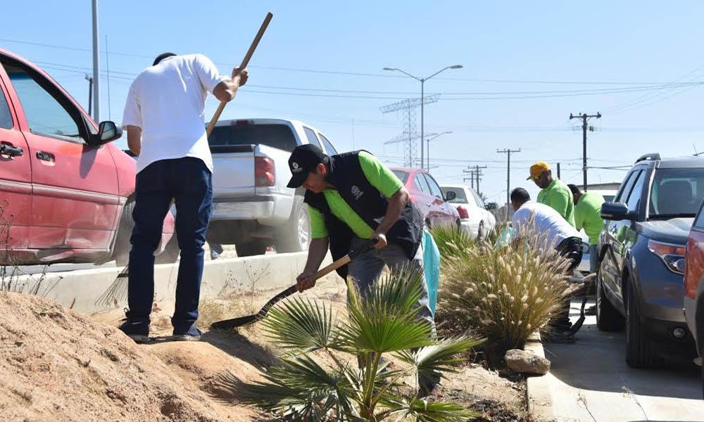 Realizan programa de limpieza y saneamiento de espacio públicos en Ensenada