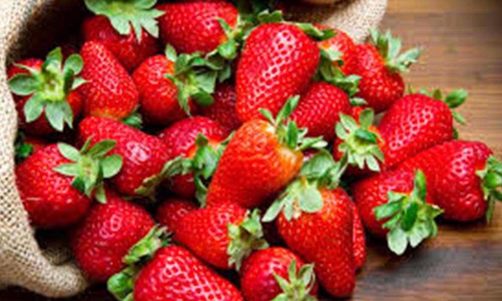 ¿Sabes cómo lavar las fresas?  Descubre si lo haces bien