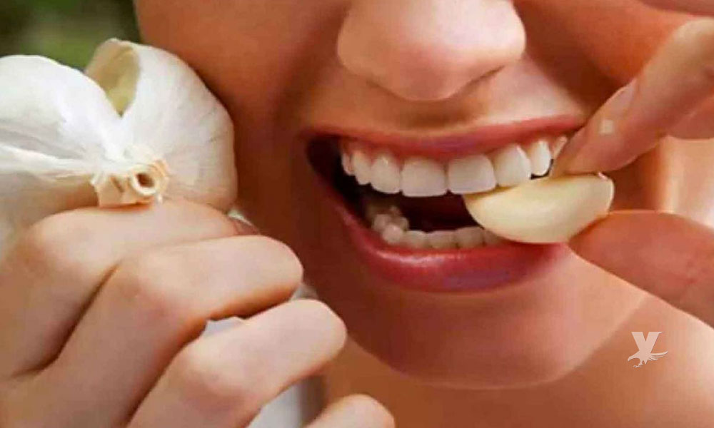 Cuida tu salud comiendo ajo todos los días