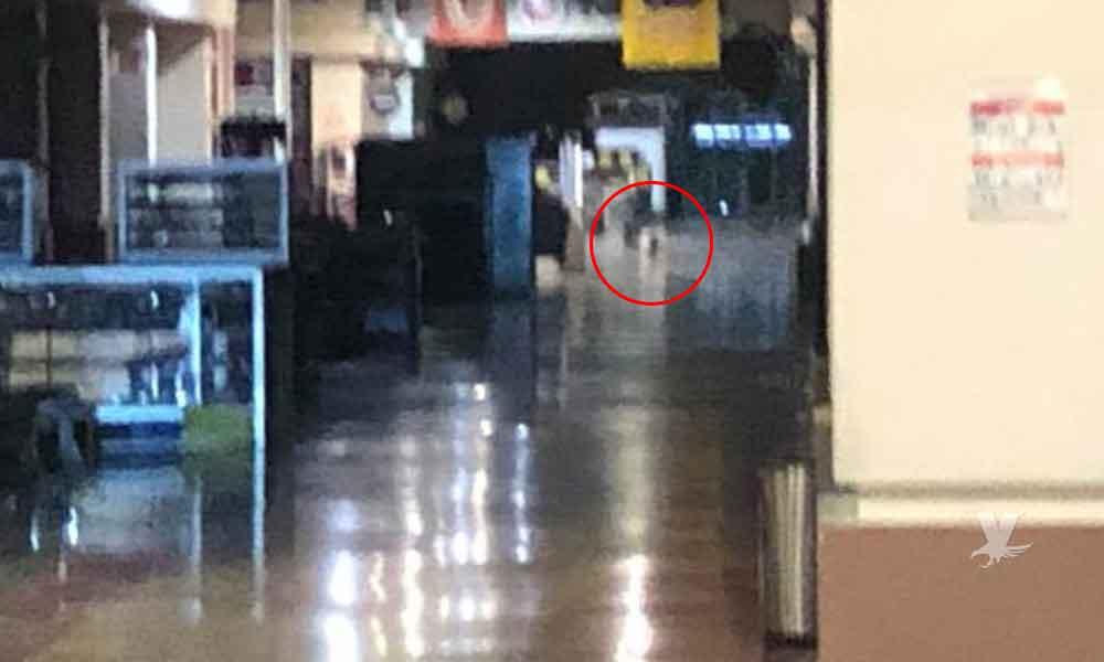 Fantasma de bebé gateando aparece en centro comercial de Mexicali