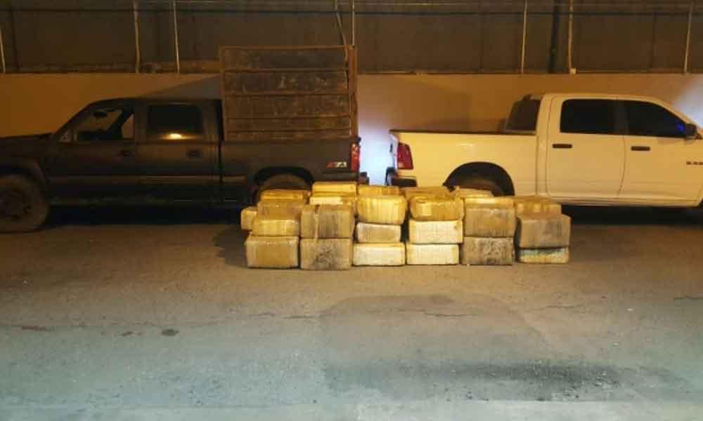 Decomisan más de 800 kilos de marihuana en Mexicali