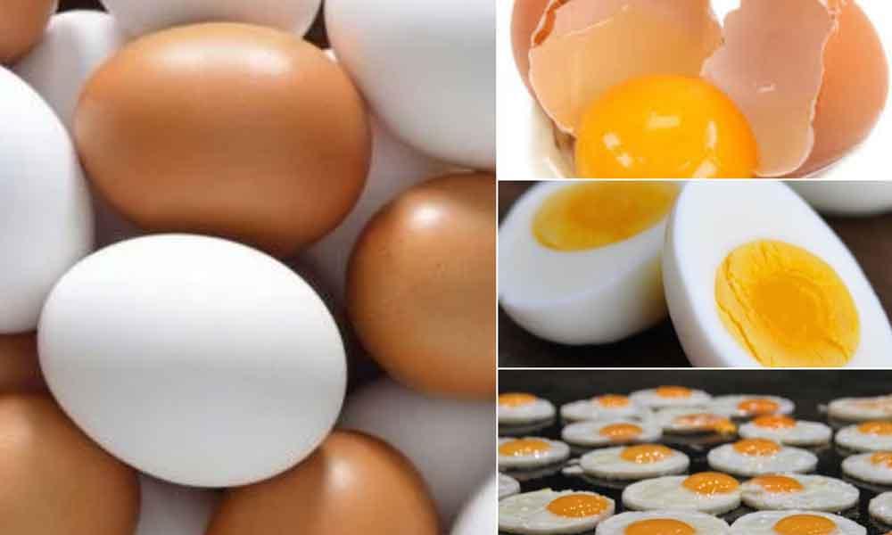 Estudio lo confirma; comer un huevo diario aumenta tu inteligencia