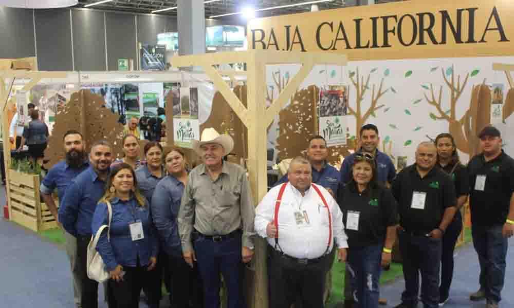 """Participan cuatro empresas comunitarias de Baja California, en """"Expo Forestal 2018"""" en Guadalajara"""
