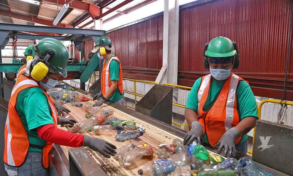 Coca-Cola, PepsiCo y Nestlé son las principales compañías generadoras de basura plástica en México
