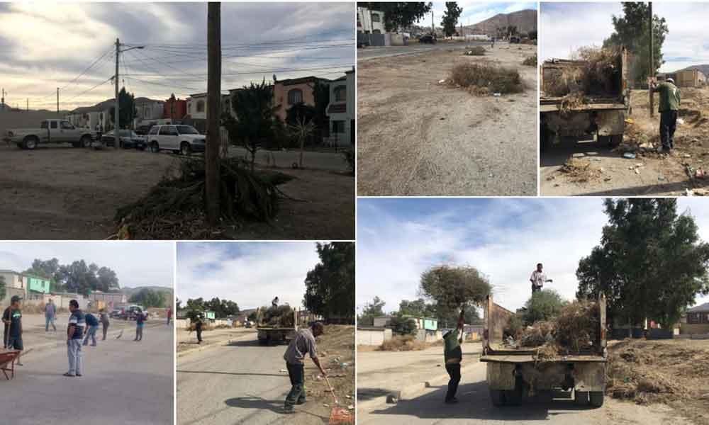 Se suman vecinos a jornada de limpieza del Fracc. Terrazas del Río en Tecate