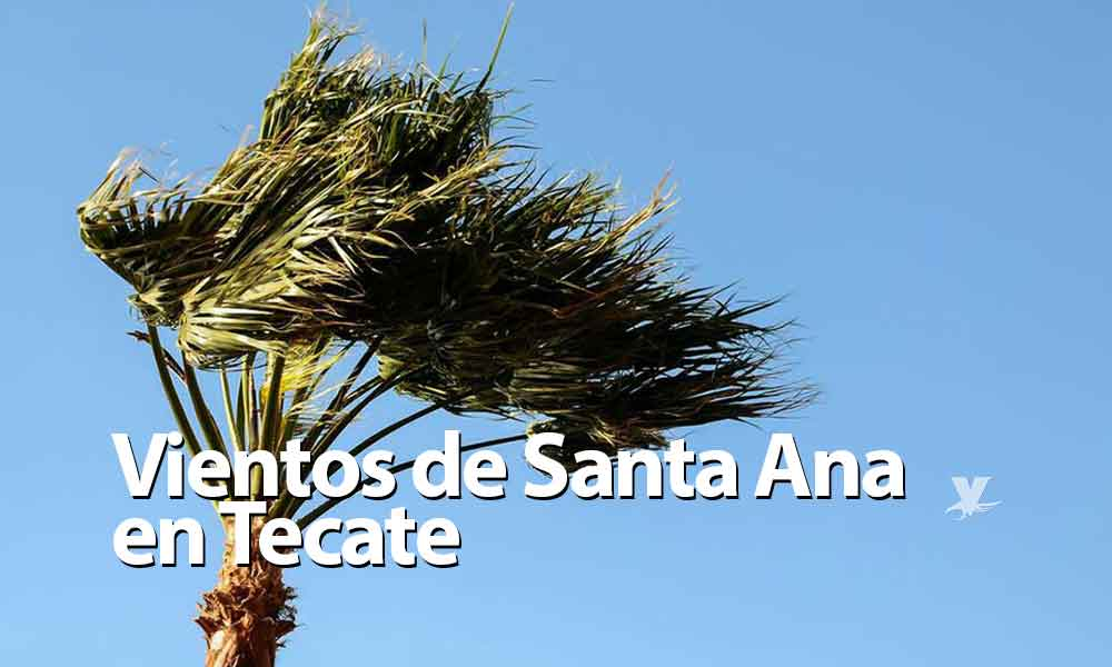 Esperan condición Santa Ana para este lunes en Tecate