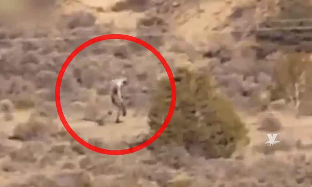 (VIDEO) Aseguran haber visto a extraño ser en desierto de Mexicali
