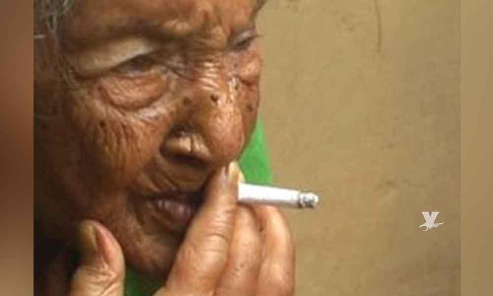 Una dosis diaria de marihuana en la vejez podría reducir la demencia