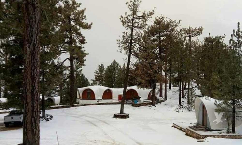 (FOTOS) Sierra San Pedro Mártir registra la primera nevada de la temporada