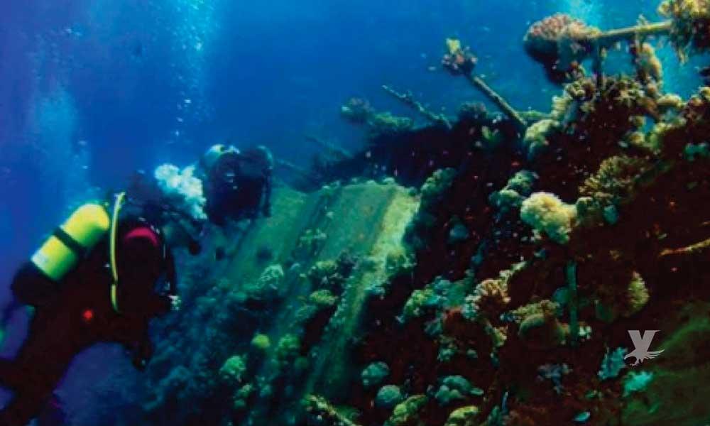 Visita Baja California y conoce su Parque Submarino