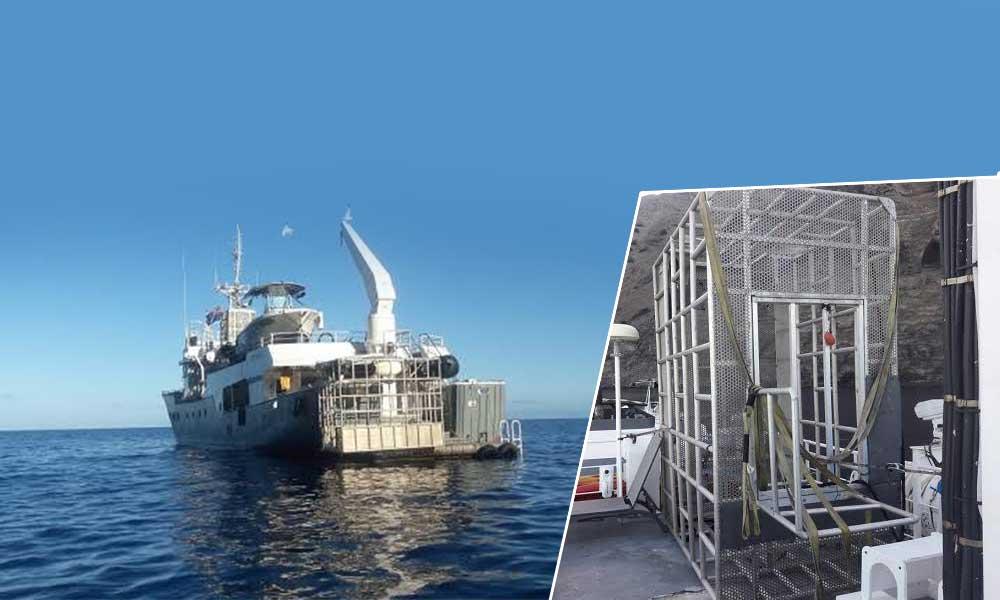 Aseguran embarcación en Ensenada, ofrecía la observación de ejemplares de Tiburón Blanco, mediante jaulas y un submarino