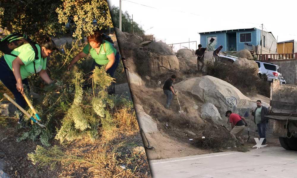 Llevan programa de recuperación de espacios a La Escudero en Tecate