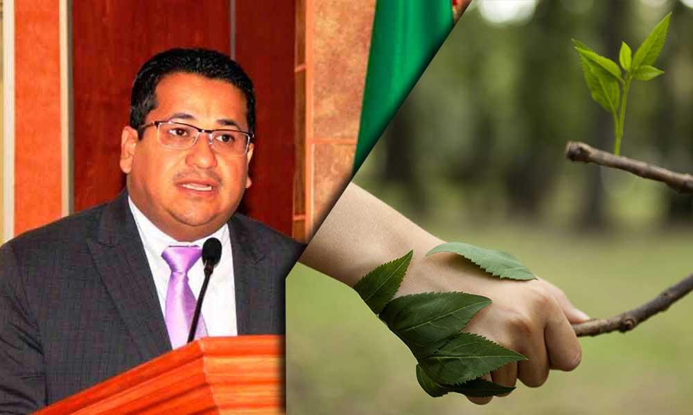 Busca Diputado Benja Gómez reparación de las conductas que atentan contra el ambiente en Baja California