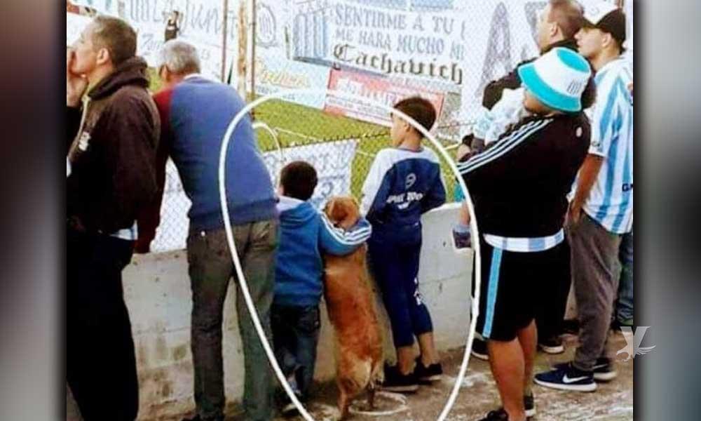 """Niño y """"su mejor amigo"""" un perrito, vieron el fútbol juntos desde la tribuna en Argentina"""