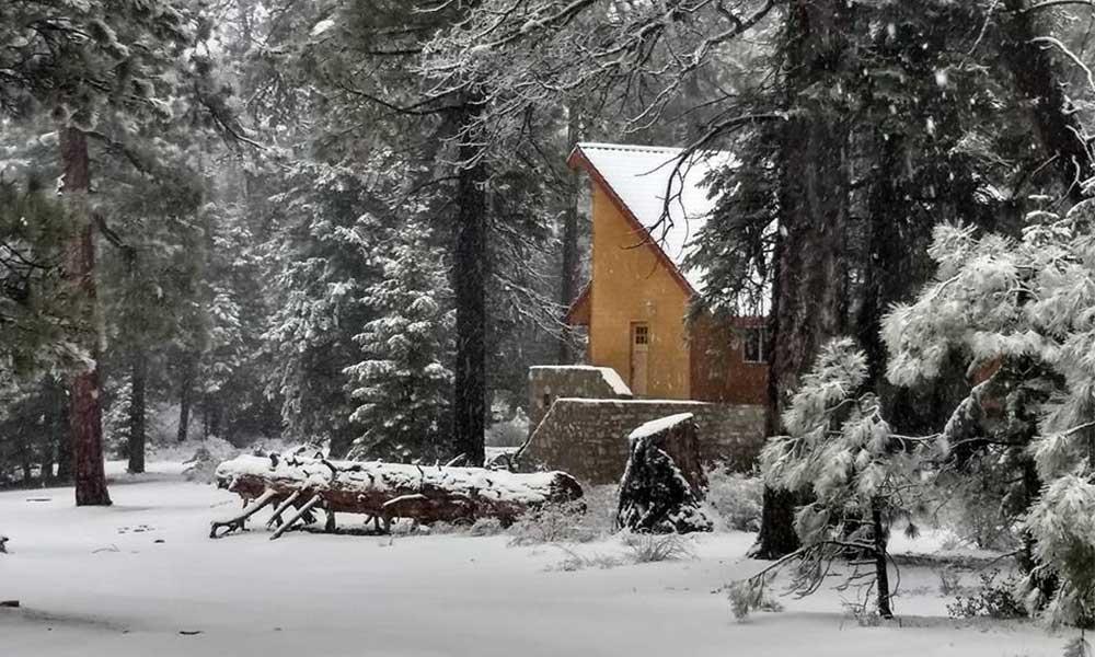 Caen 2 pulgadas de nieve en San Pedro Mártir (Galería)