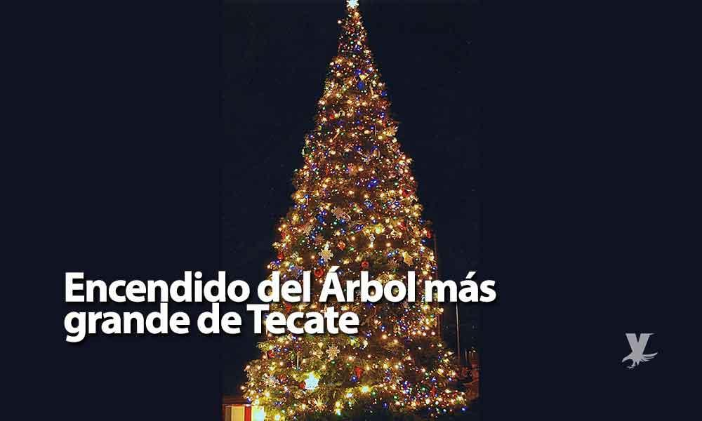 Invitan al encendido del árbol navideño más grande de Tecate