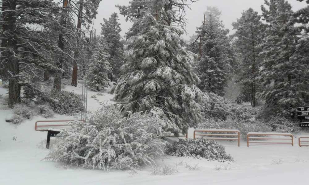 Continuarán lluvias con temperaturas gélidas de -10 grados para la sierra en BC