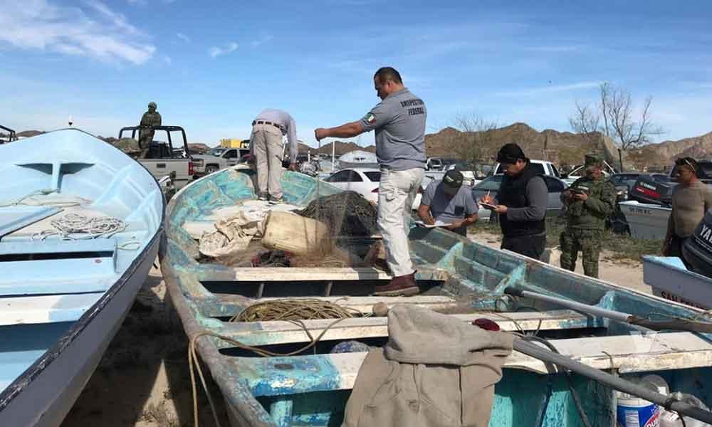 PROFEPA asegura embarcación por realizar pesca ilegal en área protegida de San Felipe