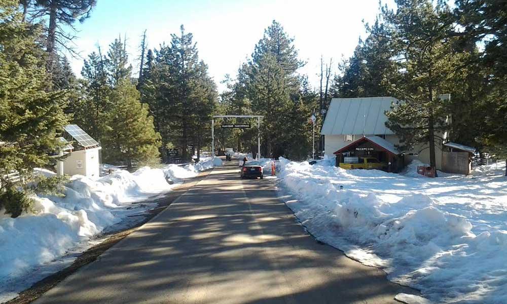 Cerrarán acceso al Parque Nacional San Pedro Mártir en caso de nevadas
