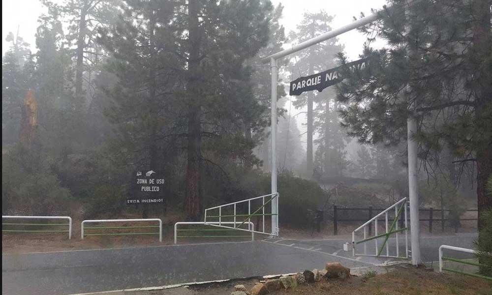 Cierran Parque Nacional Sierra de San Pedro Mártir por fuertes lluvias