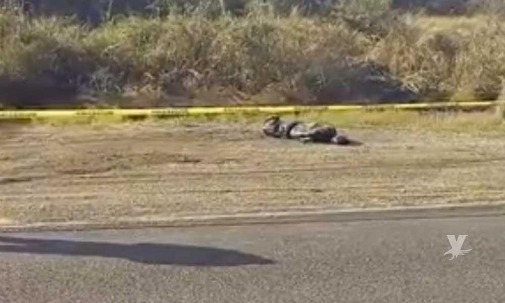 Cuerpo sin vida es encontrado en la carretera Tijuana-Ensenada