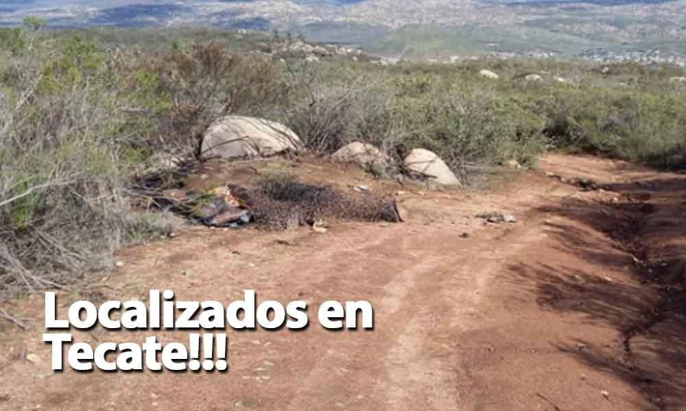 Localizan 4 cuerpos ejecutados y calcinados en Tecate