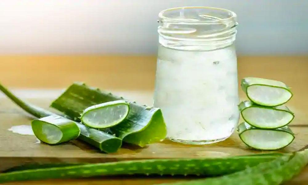 Elimina la acidez estomacal con jugos de Aloe Vera