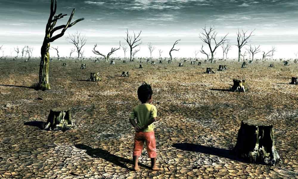 Estudios indican que la mejor manera de prevenir el cambio climático es no teniendo hijos