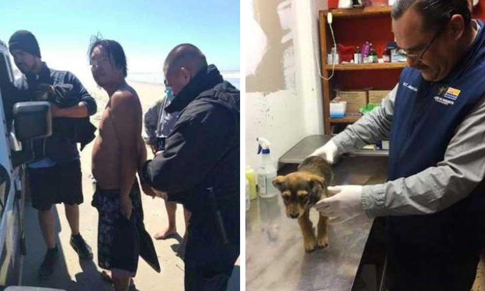 Asiático es detenido en Rosarito por intentar matar un perro para comérselo