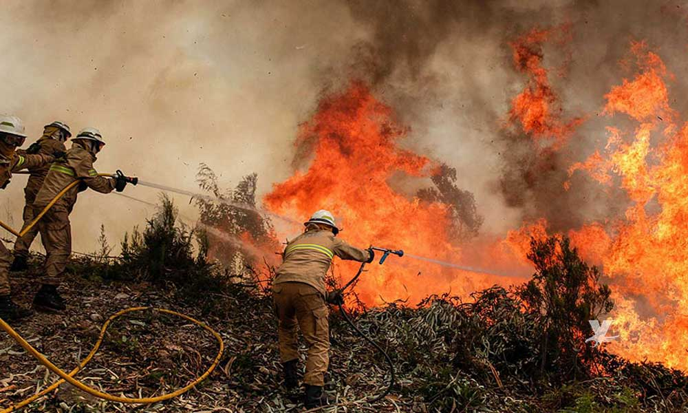 Iniciará en mayo el periodo más crítico de incendios en Baja California