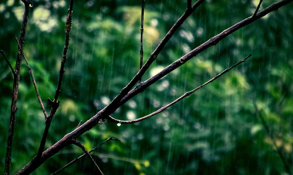 Temporada de lluvias terminará en abril: Protección Civil; aumenta la temperatura