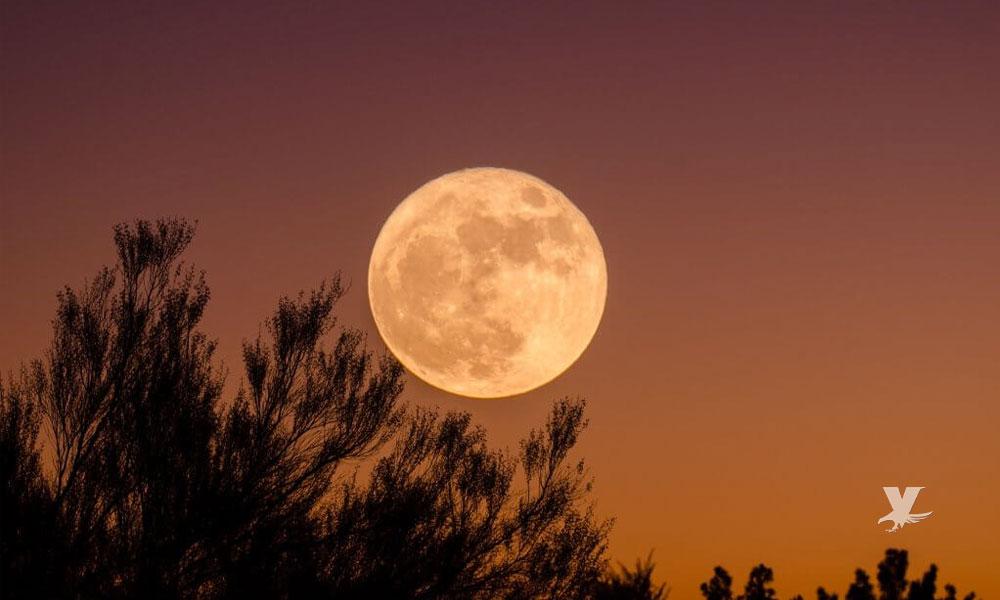 """No te pierdas hoy la última superluna del año llamada """"Luna de Gusano"""""""