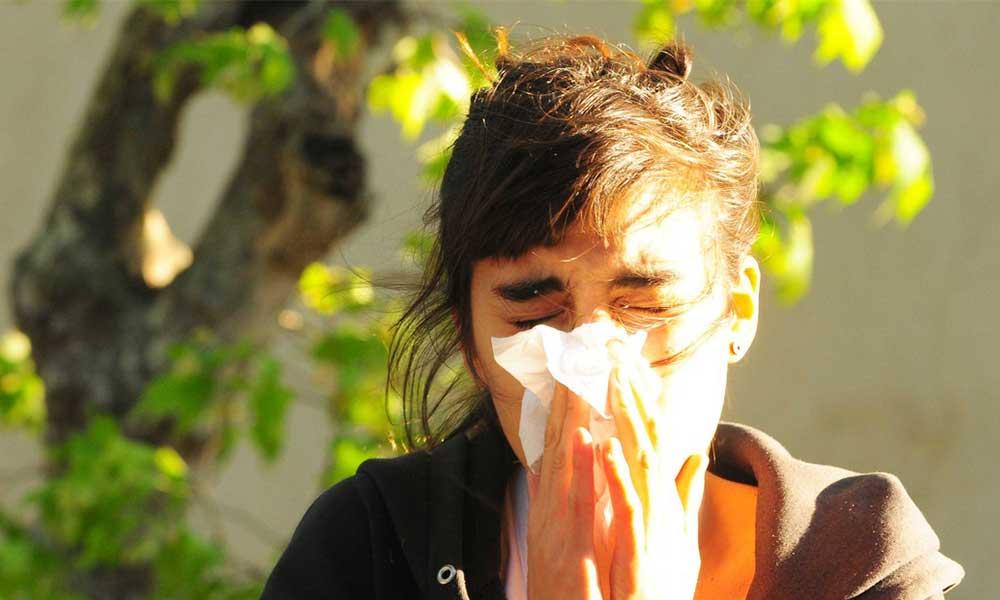 Advierten por el polen, ácaros y alergias con la entrada de la primavera en BC
