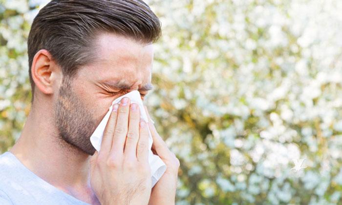 Pide Gobierno del Estado tomar medidas para evitar alergias por ácaros