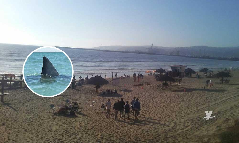 Evacuan a bañistas por presencia de tiburón cerca de la orilla de la playa en Ensenada