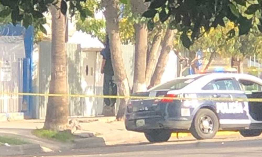 Persona se cuelga en árbol de Zona Centro en Tijuana