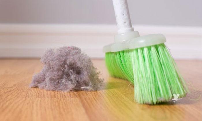 Sustancias que contiene el polvo doméstico podría ocasionar aumento de peso en las personas