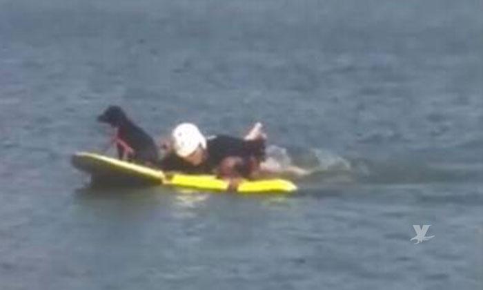 Bomberos de Tijuana rescatan a perro abandonado en la presa