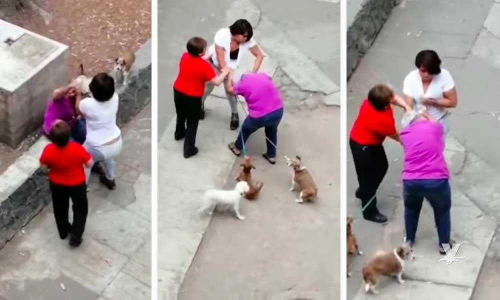 (VIDEO) Adolescente golpea a mujer de la tercera edad porque su perro le ladró