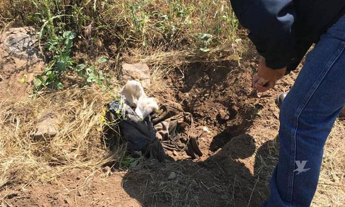 Encuentran restos humanos en lote despoblado en Tijuana