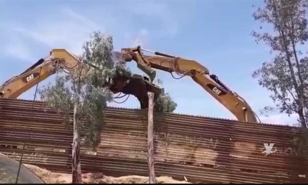 Talarán más de 400 árboles para reforzar el muro de Trump en Tecate