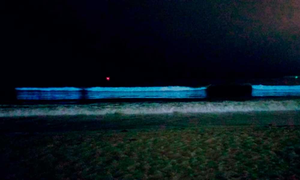 Sorprende efecto de Bioluminiscencia  en playas de Ensenada