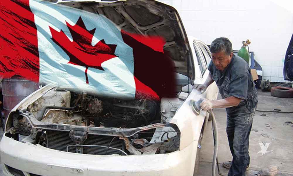 Canadá busca 'carroceros' mexicanos para trabajar en Quebec