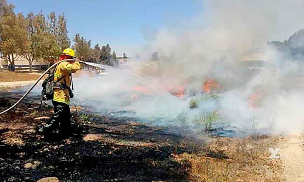 Incendio forestal en el Valle de Los Pinos en Tecate está controlado en un 65%