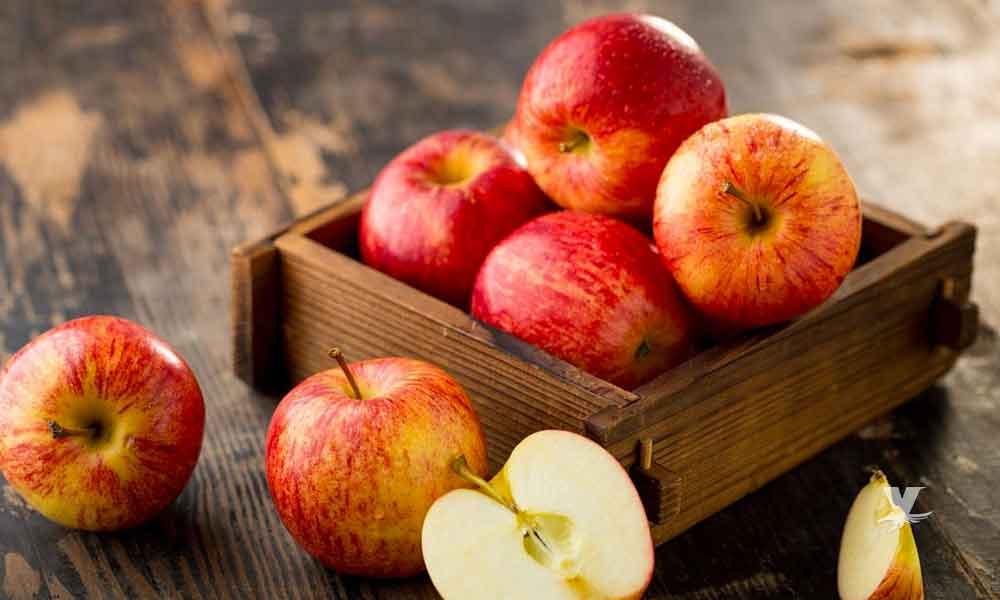 Manzanas contienen cerca de 100 millones de bacterias