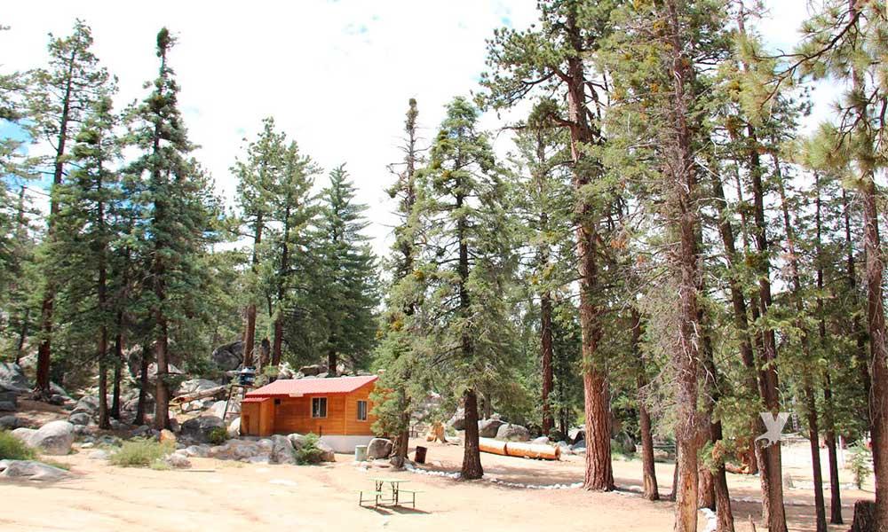 Emiten recomendaciones para visitar el Parque Nacional Sierra de San Pedro Mártir