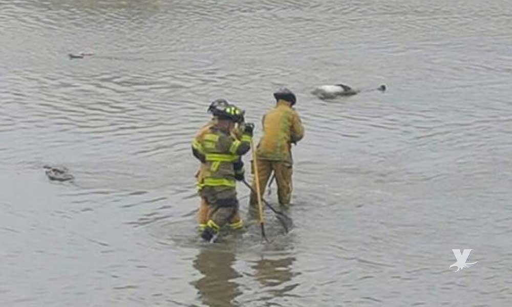 Arrojan cuerpo de un hombre en la canalización del Río Tijuana