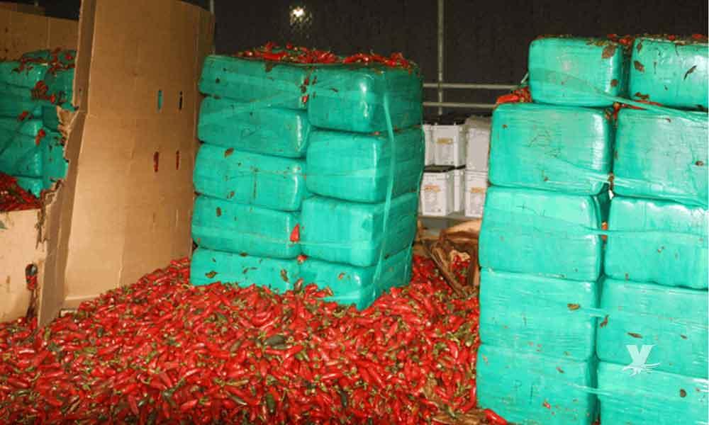 Agentes fronterizos incautan en garita de Otay 4 toneladas de marihuana escondidas entre chiles jalapeños